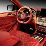 topcar-gle-coupe-red-crocodile-interior-10