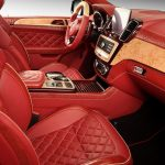 topcar-gle-coupe-red-crocodile-interior-9